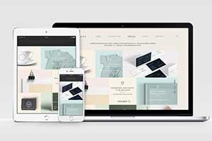 Portals and Websites